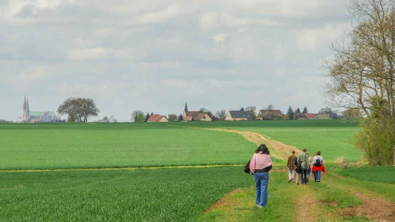 Pilgrims Walking To Chartres